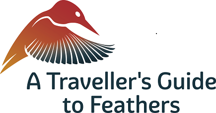 A Traveller's Guide to Feathers
