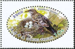 zoothera-dauma-colnect-net