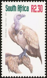 Cape Vulture stamp interest