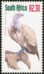 Cape Vulture stamp interest