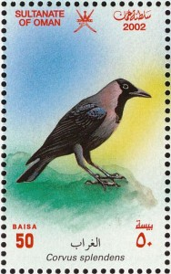 House Crow www pinterest com
