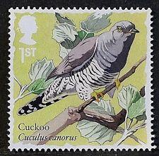 Common Cuckoo www ebay com